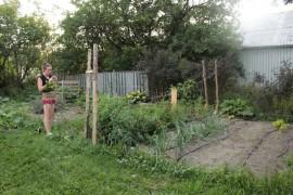 The Fitz' garden.